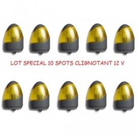 Clignotant,ampoule,12V,allducks