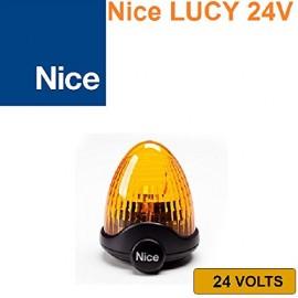 Spot Nice Lucy 24